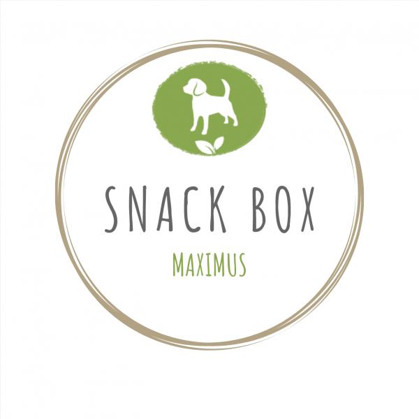 Snack Box Maxi